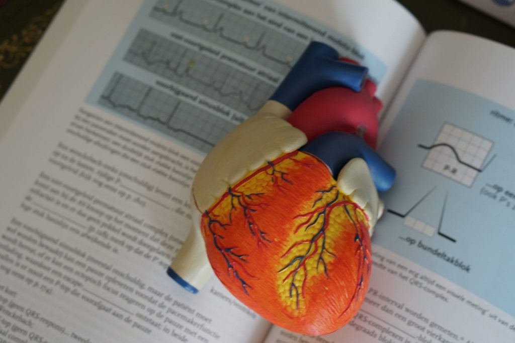 Why Do Heart Diseases Occur: Risk Factors